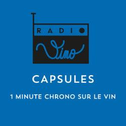 CAPSULES : 1 MINUTE CHRONO SUR LE VIN