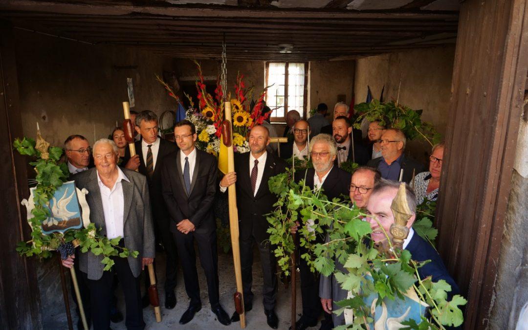 Biou d'Arbois 2019