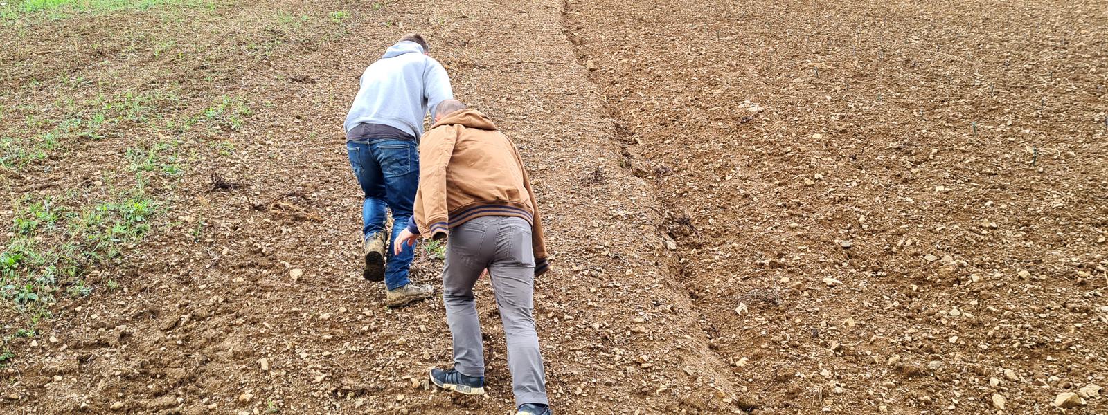 Une année dans les vignes avec Célia et David, ép. 6 : Réflexions sur le mont Grüner